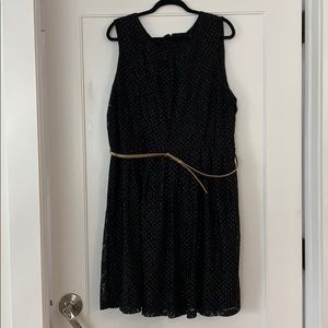 Beautiful Black Lace Gold Detail Stretchy Dress!